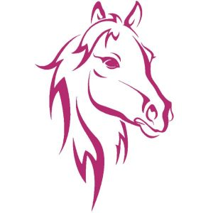 Άλογο Εκτύπωση Στάμπα Μπλουζάκι
